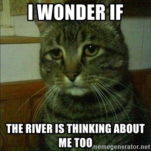 Depressed cat 2 - I wonder if The river is thinking about me too