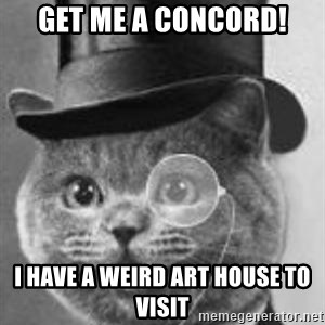 Monocle Cat - Get me a concord! I have a weird art hOuse To visit