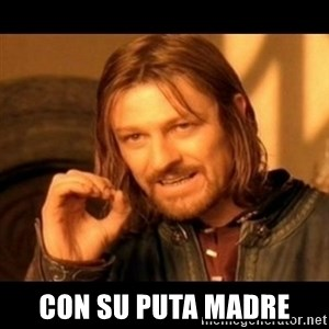 Does not simply walk into mordor Boromir  -  CON SU PUTA MADRE