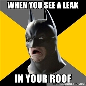 Bad Factman - wHEN YOU SEE A LEAK IN YOUR ROOF