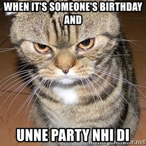 angry cat 2 - When it's someone's birthday and unne party nhi di