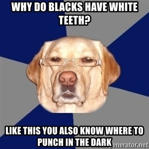 Racist Dawg - why do blacks have white teeth? like this you also know where to punch in the dark