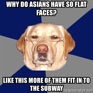 Racist Dawg - why do asians have so flat faces? like this more of them fit in to the subway