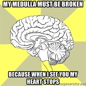 Traitor Brain - My medulla must be broken Because when I see you my heart stops
