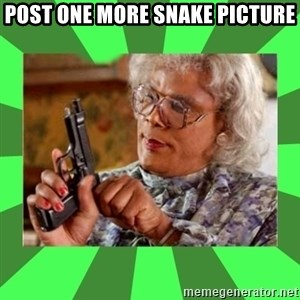 Madea - Post one more snake pIcture