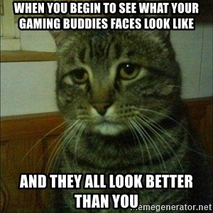 Depressed cat 2 - WHEN you begin to see what your gaming buddies faces look like and they all look better than you
