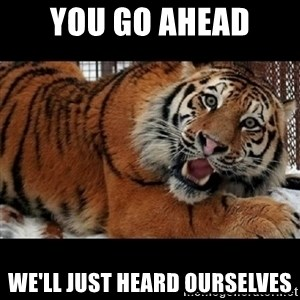 Sarcasm Tiger - You go ahead we'll just heard ourselves