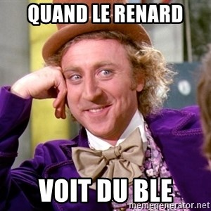 Willy Wonka - quand le renard voit du ble