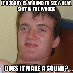 Really highguy - if nobody is around to see a bear shit in the woods does it make a sound?