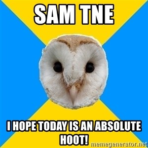 Bipolar Owl - Sam TNE I hope today is an absolute hoOt!