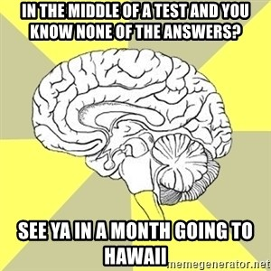 Traitor Brain - In the middle of a test and you know none of the answers? see ya in a month going to hawaii
