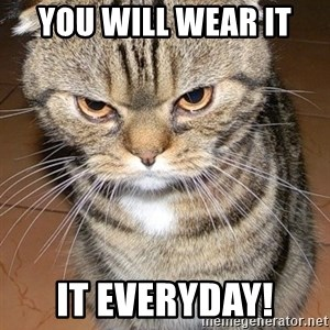angry cat 2 - You will weAr it  It everyday!