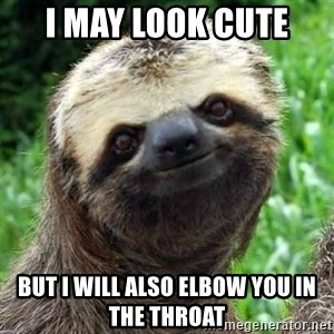 Sarcastic Sloth - I may look cute But I will also elbow you in the throat