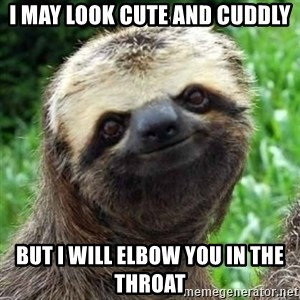 Sarcastic Sloth - I may look cute and cuddly but i will elbow you in the throat