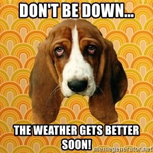 SAD DOG - Don't be down... the weather gets better soon!