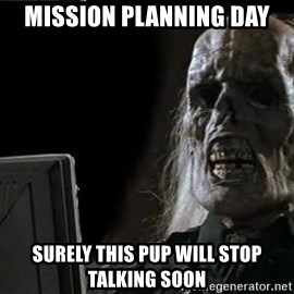 OP will surely deliver skeleton - Mission planning day Surely this pup will stop talking soon