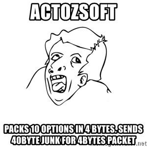 genius rage meme - actozsoft packs 10 options in 4 bytes. sends 40byte junk for 4bytes packet