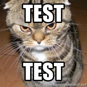 angry cat 2 - test  test
