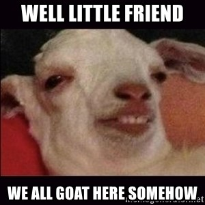 10 goat - Well little friend We all goat here somehow