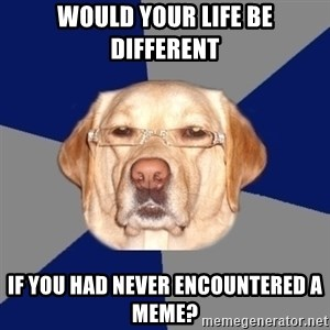 Racist Dawg - Would your life be different if you had never encountered a meme?