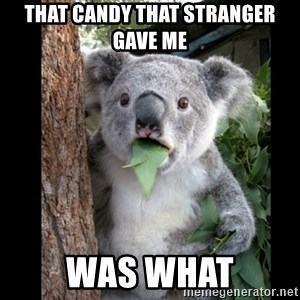 Koala can't believe it - that candy that stranger gave me was what