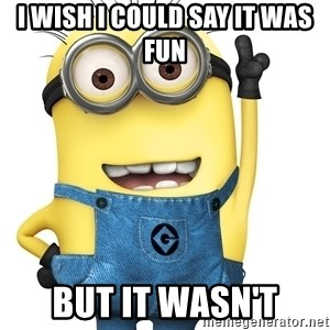 Despicable Me Minion - I wish I could say it was fun But it wasn't