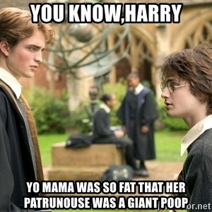 Harry Potter  - You know,harry yo mama was so fat that her patrunouse was a giant poop