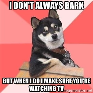 Cool Dog - I don't always bark but when i do i make sure you're watching tv
