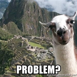 Bossy the Llama -  PROBLEM?