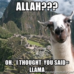 Bossy the Llama - allah??? oh.   i thought  you said= llama
