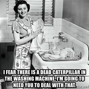 50s Housewife -  I fear there is a dead caterpillar in the Washing Machine. I'm Going to need you to Deal With that.