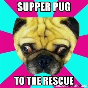 Perplexed Pug - SUpper pug to the rescue