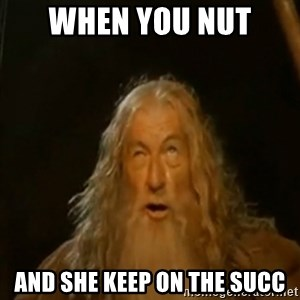 Gandalf You Shall Not Pass - when you nut  and she keep on the succ