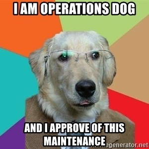 Business Dog - I AM OPErations dog and I approve of this maintenance