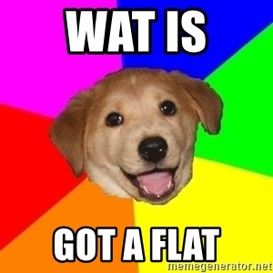 Advice Dog - wat is  got a flat