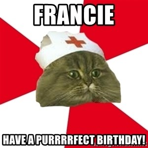 Nursing Student Cat - Francie have a purrrrfect birthday!