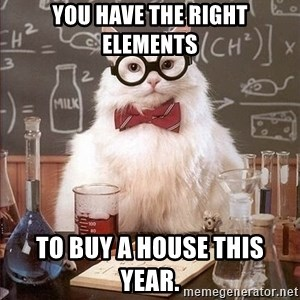Chemistry Cat - You have the right elements to buy a house this year.