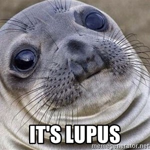 Awkward Moment Seal -  It's Lupus