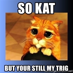 puss in boots eyes 2 - So Kat But your still my trig