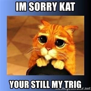 puss in boots eyes 2 - Im sorry kat Your still my trig