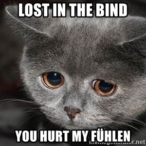 sad cat - LOST in the bind you hurt my fühlen