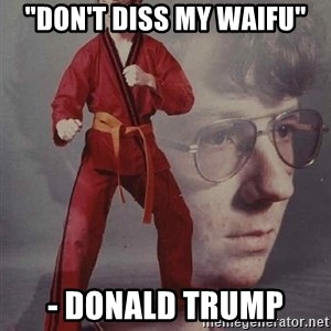 "PTSD Karate Kyle - ""Don't diss my waifu"" - Donald trump"