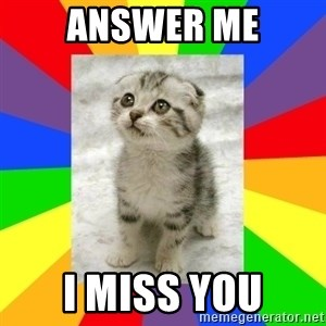 Cute Kitten - Answer me I miss you