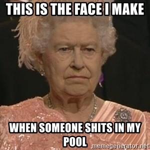 Queen Elizabeth Meme - This is the face i make  When someone shits in my pool