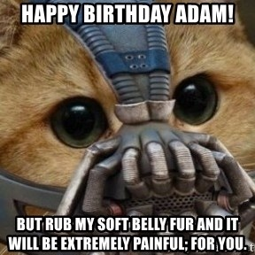 bane cat - Happy birthday Adam! but rub my soft belly fur and it will be extremely painful; for you.