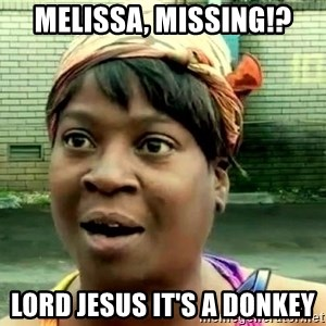 oh lord jesus it's a fire! - MELISSA, MISSING!? LORD JESUS IT'S A DONKEY