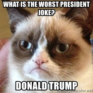 Angry Cat Meme - what is the worst president joke? Donald Trump
