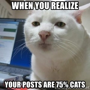 Serious Cat - WHEN YOU REALIZE YOUR POSTS ARE 75% CATS