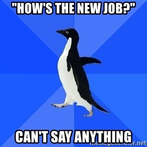 "Socially Awkward Penguin - ""How's the new job?"" Can't say anything"