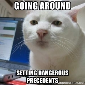 Serious Cat - Going around Setting Dangerous Precedents